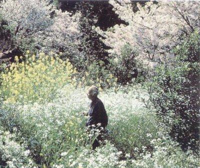 masanobu fukuoka en su jardin magico