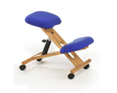 Energ as sutiles acupuntura ergonom a y mucho m s mi - Sillas para la espalda ...